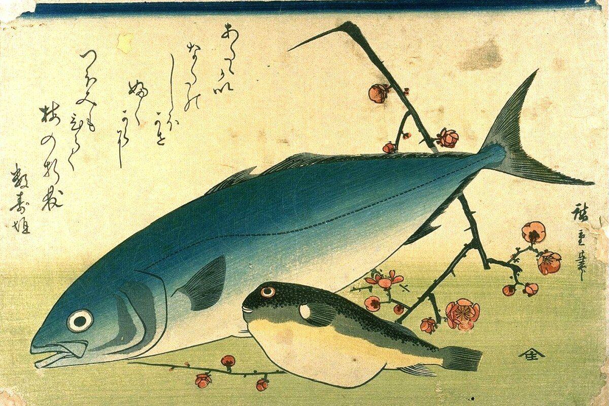 Hiroshige_A_Shoal_of_Fishes_Fugu_Yellowtail