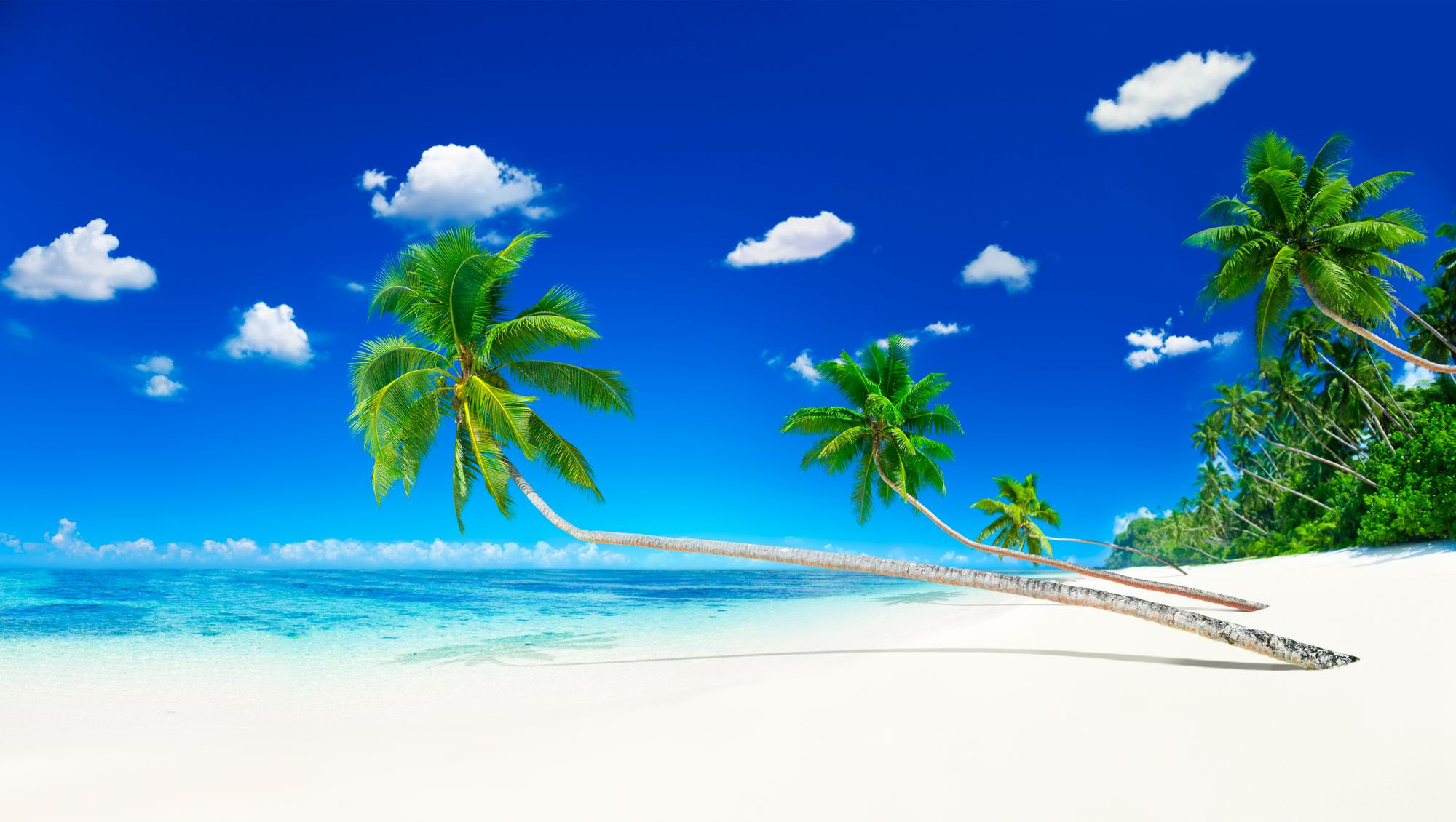 Island-image-from-rawpixel-id-95328-jpeg